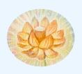 Lotus (Mala of God) Hintergrund Website Shaktiyoga